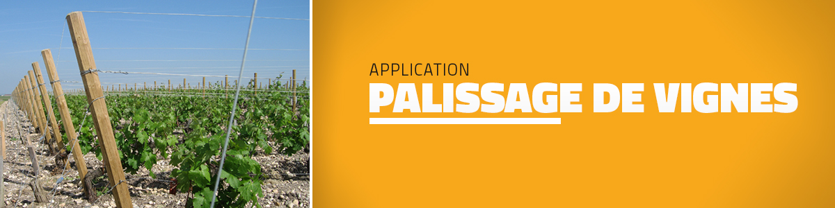 palissage-de-vignes-application